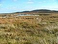 Lochan on the Moorland - geograph.org.uk - 573465.jpg