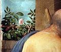 Lorenzo lotto, madonna delle rose, 1526, 03.jpg