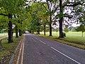 Loughton Lane, Theydon Bois.jpg