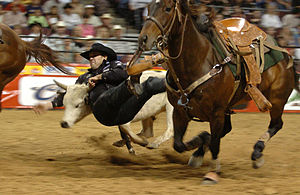 Steer wrestling - Steer wrestling at the 2004 National Finals Rodeo.