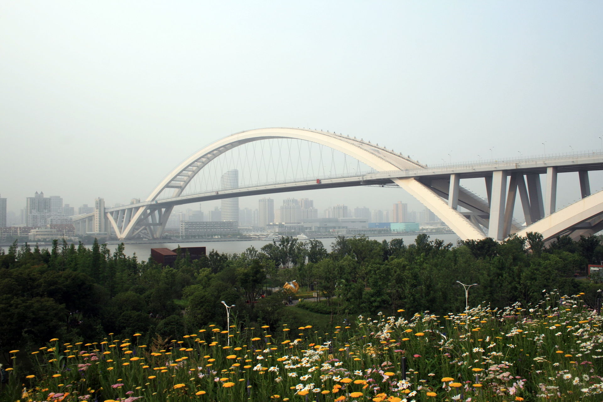 Lupu Bridge - Wikipedia