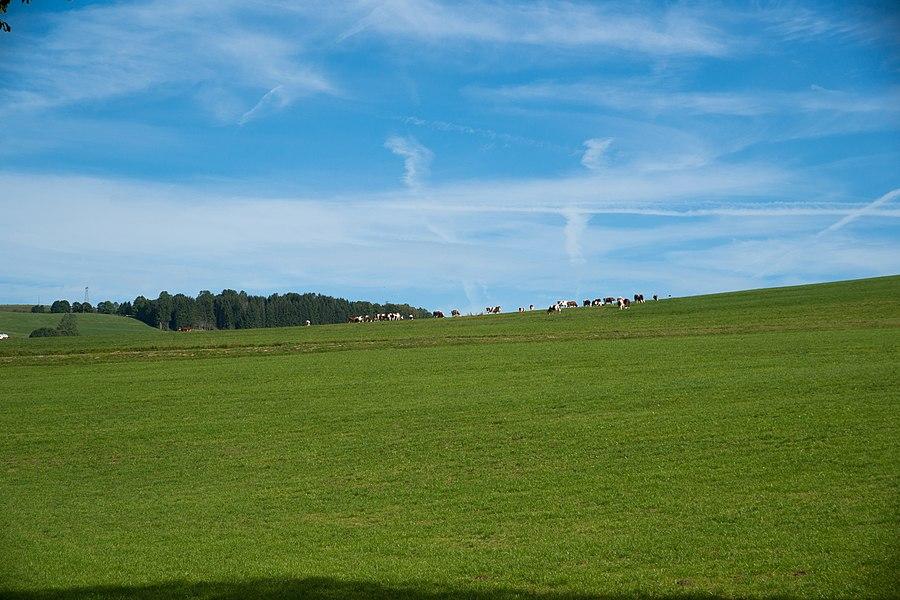 Métabief - paysage du Haut-Doubs.