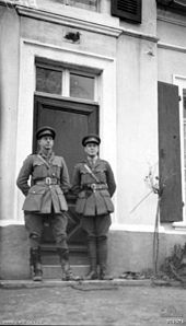 Two officers stand on the steps of a French Chateau.