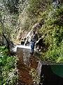 Madeira3 002.jpg