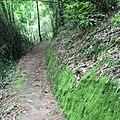 Mae U Kho, Khun Yuam District, Mae Hong Son 58140, Thailand - panoramio (1).jpg