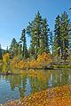 Manzanita Lake fall colors (9169949212).jpg