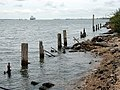 Marchwood Foreshore - geograph.org.uk - 647503.jpg