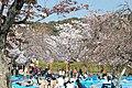 Maruyama Park (3515277557).jpg