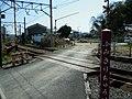 Matsunoki - panoramio.jpg