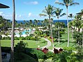 Maui Ritz Carlton - panoramio.jpg