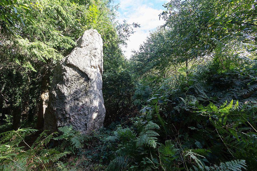 Français:  Menhir de la Roche-Longue à Saint-Julien (France).