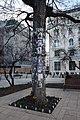 Michael Jackson Memorial Tree, Budapest, Hungary (Ank Kumar) 04.jpg