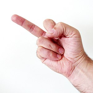 Middle finger 3 (mirrored).JPG