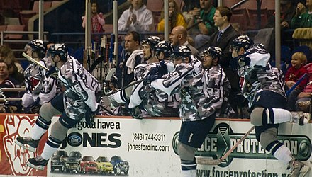 Players from the South Carolina Stingrays perform a line change. A line change is a substitution of an entire line at once. Military appreciation night South Carolina Stingrays.jpg