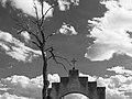 Mission San Xavier del Bac Gate.jpg