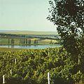 Moldova (1980). (19679033899).jpg
