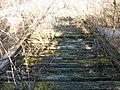 Monroe County - Victor Pike - abandoned railway - tracks - P1120769.JPG