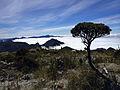 Montanhas encobertas por nuvens na travessia da Serra Fina.jpg