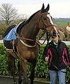 Monte Cavallo (8504692007).jpg