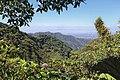 Monteverde Reserve Costa Rica 12.jpg