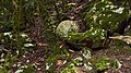 Montsegur projectil1.jpg