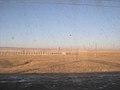 More Steppe (4983154844).jpg