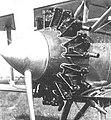 Motor Hornet na Š-131.jpg