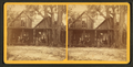 Mrs. H.B. Stowe & family, St. Johns River, Fla, from Robert N. Dennis collection of stereoscopic views.png