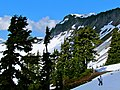 Mt. Baker-Snoqualmie National Forest (9292826182).jpg