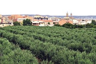 Muel, Zaragoza Place in Aragon, Spain