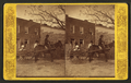 Mule cart, from Robert N. Dennis collection of stereoscopic views.png