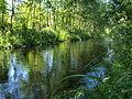 Nõva jõgi.jpg
