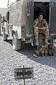 NATO - International Security Assistance Force DVIDS123175.jpg