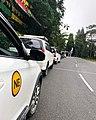 NE Taxi Fleet.jpg