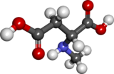 Ball and stick model of N-methyl-D-aspartic acid