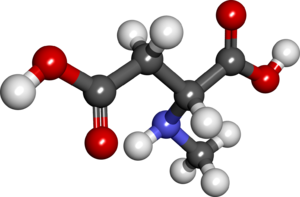 N-Methyl-D-aspartic acid - Image: NMDA2