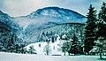Nacionalni park Sutjeska pod snijegom.jpg