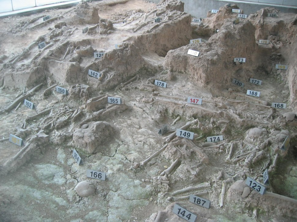 Nanjing massacre bones of victims1