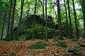 Natural monument Tupadelské skály in 2012 (5).JPG