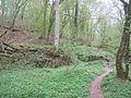 Naturschutzgebiet Eifgenbach.2.JPG