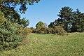 Naturschutzgebiet Heulerberg (1).jpg