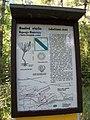 Naučná stezka Dalejským údolím, Lobolitová stráň.jpg