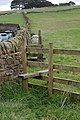 New Stile - geograph.org.uk - 548481.jpg