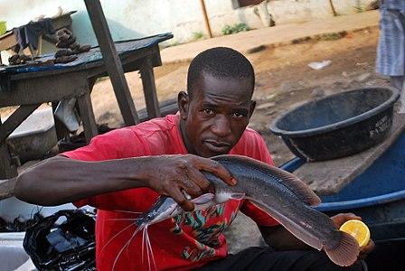 Nigerian Fish sellers (13).jpg