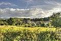 Nigueiroá - Verea - panoramio.jpg