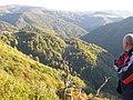 Niz Neretvicu - panoramio.jpg