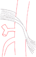 Normal median arcuate ligament and celiac artery.png