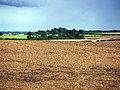 North Lincolnshire landscape - geograph.org.uk - 46386.jpg