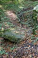 Nottuln, Lager Herbstwald -- 2017 -- 3254.jpg