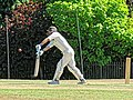 Nuthurst CC v. Henfield CC at Mannings Heath, West Sussex, England 009.jpg